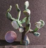 Spineless Prickly Pear Cactus Plant 1:12 Miniature 7908