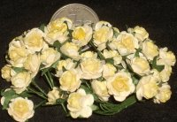 Yellow Rose of Texas 50 Open 1:12 Miniature Roses Flowers