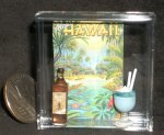 Luau Poster Alcohol Bottle & Drink 1:12 Miniature Hawaii 7142