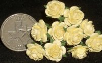 Yellow Rose of Texas 10 Open 1:12 Miniature Flower Roses